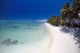 Ein weißer, palmengesäumter Strand mit versteckten Hütten und das türkisblaue Meer von Rarotonga, Cookinseln.