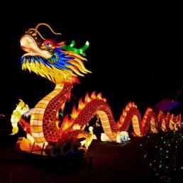 Das Chinesische Neujahrs Festival wird in Thailand hauptsächlich in den Chinatowns gefeiert, wobei vielerorts beleuchtete Drachen gezeigt werden
